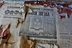 Zeitung11